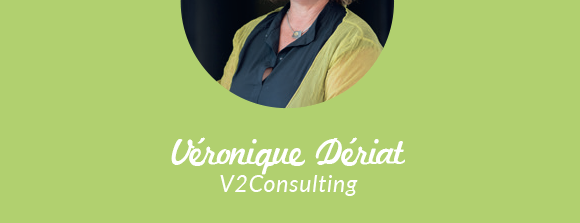 V2 Consulting